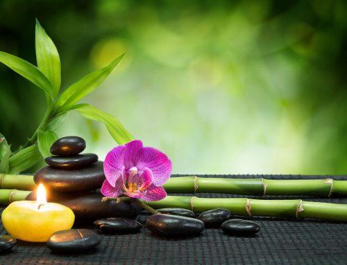Feng Shui – Kurutulmuş veya yapay çiçekler?